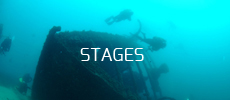 tarif stages